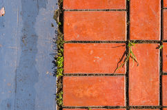 Bricks and the walkway Royalty Free Stock Photo
