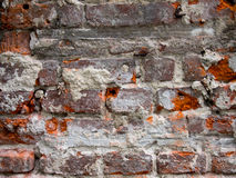 Bricks Wall. Ancient Bricks Wall close up detail Royalty Free Stock Images