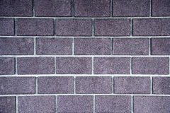 Bricks wall background. Color purple bricks wall background. Texture Royalty Free Stock Photos