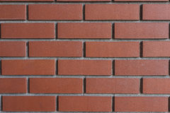Bricks in Wall Stock Images