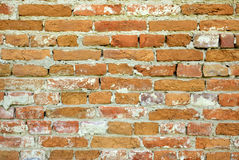 Bricks wall. Wall created from orange bricks Royalty Free Stock Photography