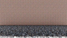 Bricks Wall and Dry Grass Floor Stock Photography