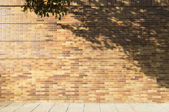 Bricks wall with tree shadow and sidewalk Royalty Free Stock Photography