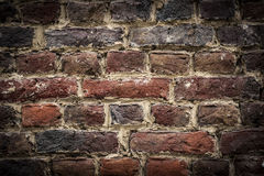 Brickswall background Royalty Free Stock Images