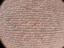 brickwall白点 免版税库存图片