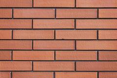 brickwall πνεύμα Στοκ εικόνες με δικαίωμα ελεύθερης χρήσης