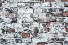 brickwall предпосылки старое Стоковая Фотография RF