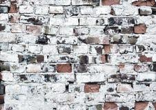 brickwall предпосылки старое Стоковые Изображения RF
