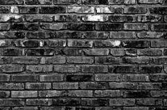 Brickwall 免版税库存图片