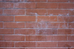 brickwall Obrazy Royalty Free