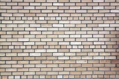 brickwall Стоковая Фотография RF