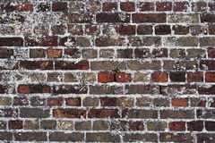 Brickwall Stock Foto