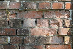 Brickwall Images libres de droits