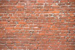 Brickwall Immagine Stock