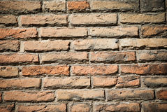 Brickwall Royaltyfria Bilder