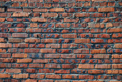 Brickwall Fotos de Stock