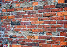 brickwall Arkivbilder
