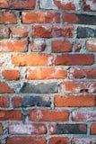 Brickwall 免版税图库摄影