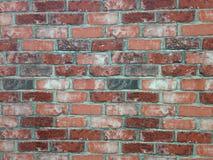 Brickwall background Stock Images