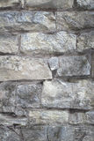 Brickwall cinzento imagem de stock royalty free