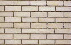 Brickwall for constuction backgrounds Stock Images