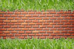 Brickwall ed erba verde Fotografia Stock Libera da Diritti