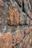 Brickwall med oskarp bakgrund Royaltyfri Foto
