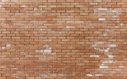 Brickwall nouvellement construit Photo stock