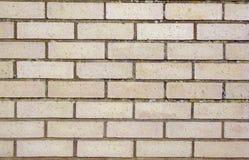 Brickwall per gli ambiti di provenienza della costruzione Immagini Stock