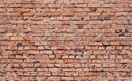 Brickwall senza cuciture Immagini Stock Libere da Diritti