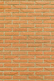 Brickwall vertical background Royalty Free Stock Image