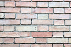 Brickwalltexture stockbild