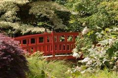 bridżowa czerwień Obraz Royalty Free