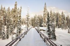 bridżowa pola śniegu zima Obrazy Stock