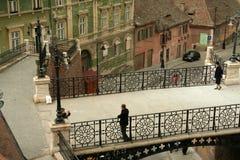 bridżowe kłamców Obraz Royalty Free