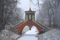 Bridżowy Listopadu dzień tsarskoye selo rosji Fotografia Stock