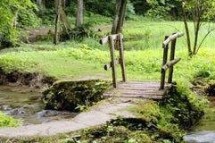 bridżowy mały Zdjęcia Stock