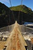 bridżowy park narodowy zawieszenia tsitsikamma zdjęcie royalty free