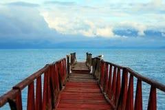 bridżowy stary seagull obraz royalty free
