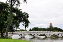 bridżowy biel Fotografia Royalty Free