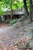 bridżowy las Zdjęcia Royalty Free