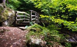 bridżowy osamotniony Zdjęcie Stock
