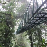 Bridżowy parka narodowego Monteverde Costa Rica las tropikalny Zdjęcie Royalty Free