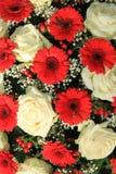 Bridal букет в красной и белом Стоковая Фотография RF