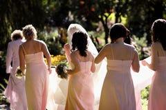 bridal партия Стоковые Фотографии RF