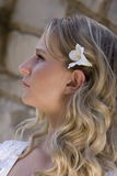 Bridal. Young pretty blonde bridal portraits Royalty Free Stock Image