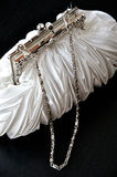 Bridal Accesories Stock Image
