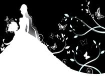 Bridal Background Royalty Free Stock Photos