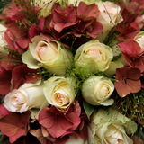 Bridal bouquet. Roses and hydrangea, lovely bush, bridal bouquet, wedding-flowers royalty free stock photography