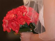 Bridal bouquet royalty free stock photo